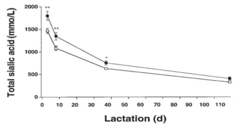 میزان اسیدسیالیک در زمان شیردهی