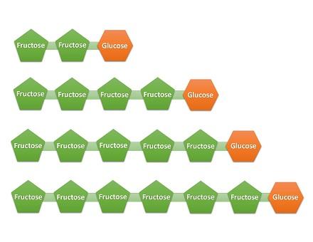 فروکتوالیگوساکاریدهای طبیعی موجود در خوراکی ها دارای 2 تا 5 واحد فروکتوز در ساختار خود هستند